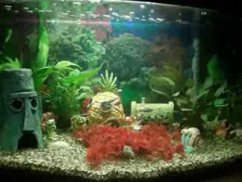 aquarium 45 liter met tetra in 400 plus binnenfilter youtube. Black Bedroom Furniture Sets. Home Design Ideas