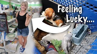 I Think We got LUCKY at Goodwill! | Filled Our Cart for Resale | Thrifting