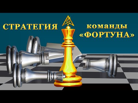 Проект ARGOS (АРГОС). СТРАТЕГИЯ КОМАНДЫ.
