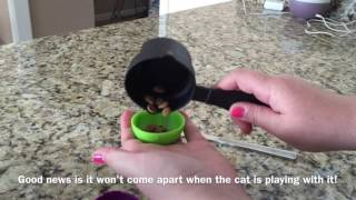 How To Slow Down A Fast Eater [A Video For Cat Owners]