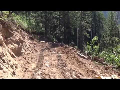 Building Logging Roads