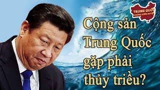 Xu hướng phản kháng Trung Cộng đang lan khắp Thế Giới?   Trung Quốc Không Kiểm Duyệt