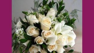 Поздравляю своего любимого мужа Юрочку с нашей 37 годовщиной свадьбы!