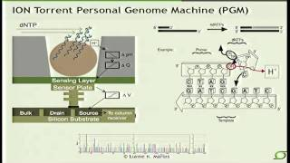 Next-Generation Sequencing Technologies - Elaine Mardis (2012)