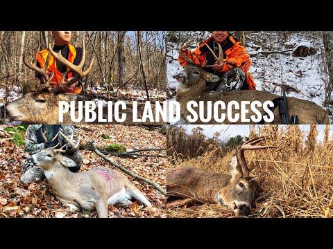 Deer Hunting Public Land Tips - 5 Elements For Success