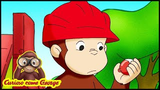 Curioso Come George 🐵Mel é para Urso 🐵Cartoni per Bambini 🐵George la Scimmia