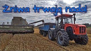 Żniwa 2019 - ciąg dalszy - Ślązak & Fortschritt