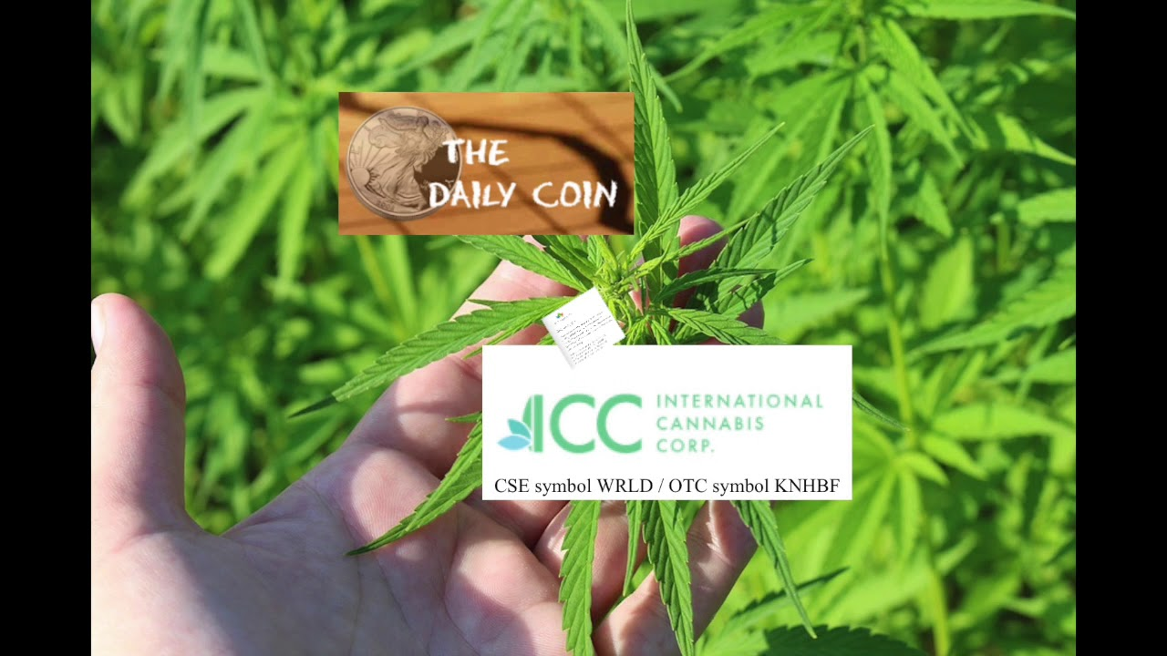 Lucas Birdsall: Cannabis Around the World