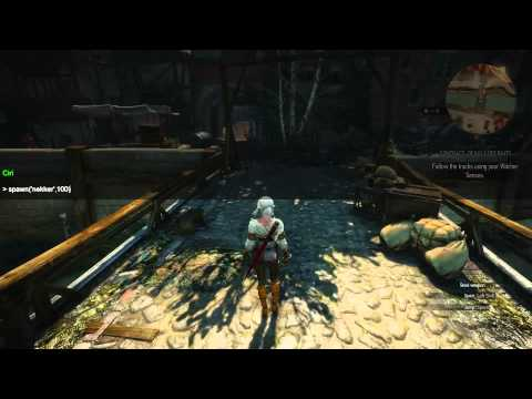 Witcher 3 how to delete debug console