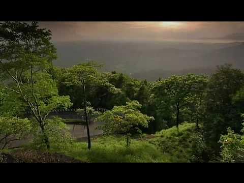 Agumbe The Wonders Of The Agumbe Rainforest Doovi