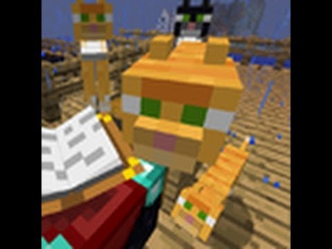 how to make an ocelot a cat in minecraft