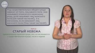 Уроки русского Имена существительные общего рода