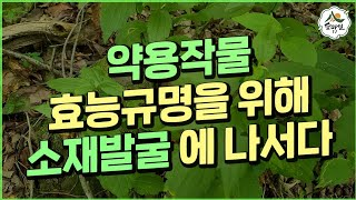 산림자원연구 산림 임업 농업 약초 귀농 귀촌 약용식물 …