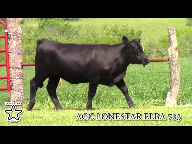 AGC Lonestar Elba 703