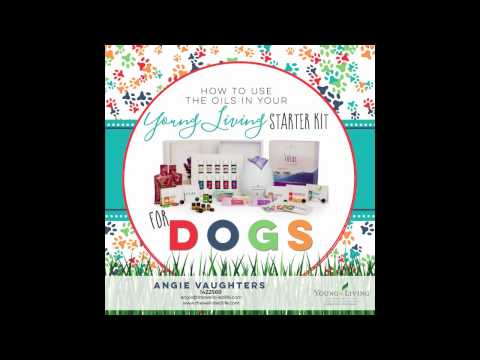 essential-oils-for-dogs!