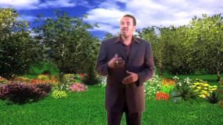 """Istar By Eid Jama """"Batalaale"""" (HD)"""