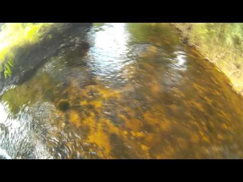 Первые щучки микроречки (видео-отчет) июнь 2016 ловля щуки в ...