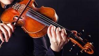 (My Beautiful World): 10 sự thật thú vị về violon