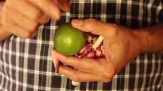 METODO SIMPLES PARA PARAR DE FUMAR - SEU GONCALO