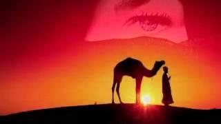 اجمل اغنية في العالم '' شاب مامي ''  جيبولي مالي