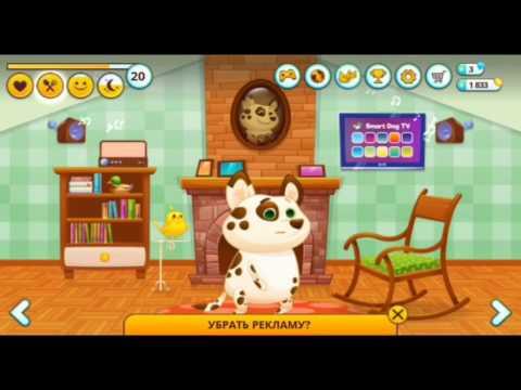 Видео Симулятор собаки онлайн играть