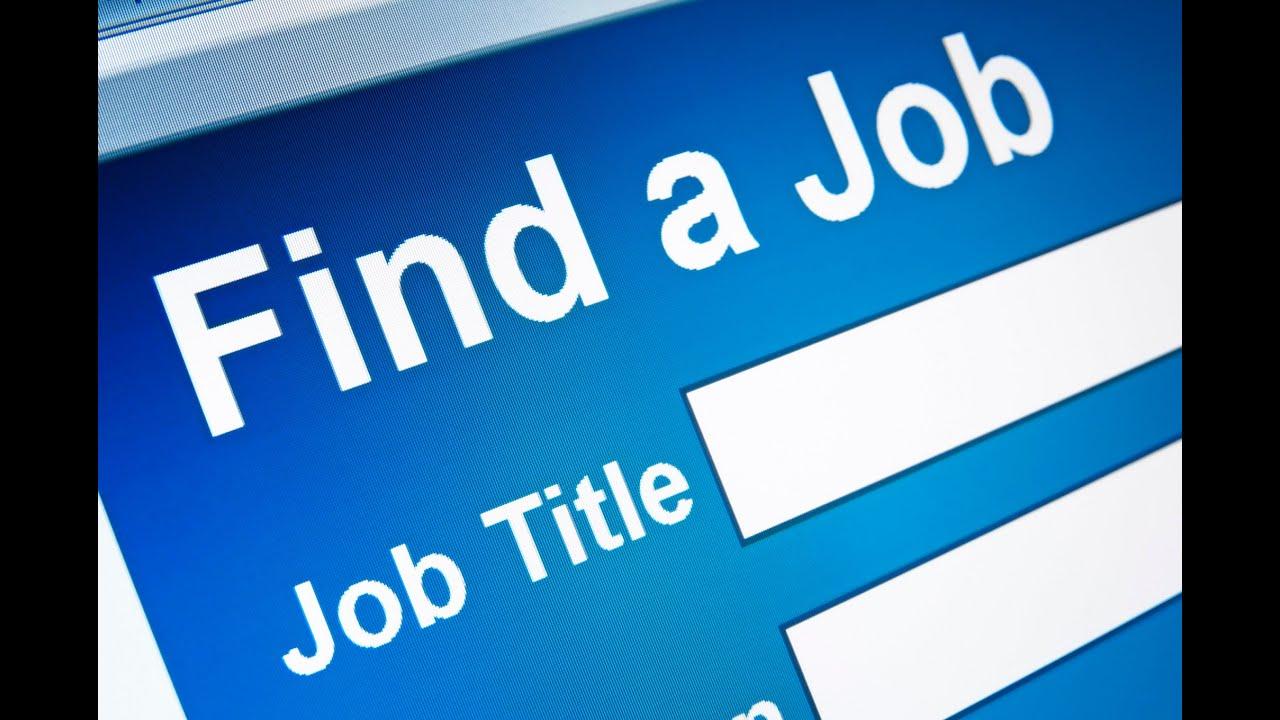 как найти работу в новой зеландии