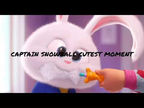 Download Captain Snowball Cutest moments|secret life's of pets