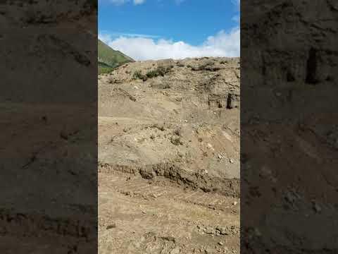 Alaska Mining 2019