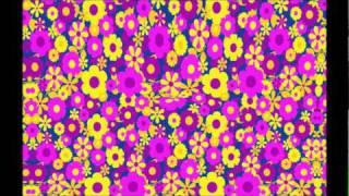 Sandi Thom - I wish I was punk rocker (with flowers in my hair)