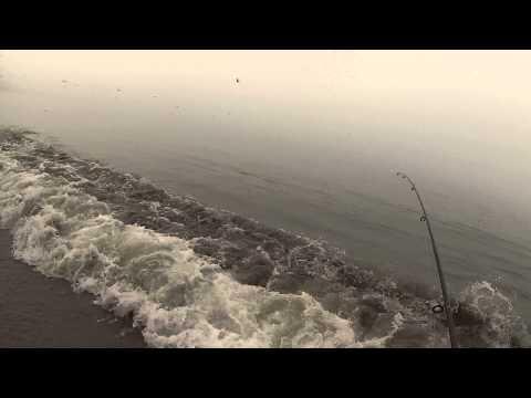 Santa Cruz Surf Fishing