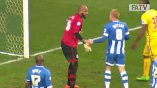 Wigan Athletic vs Crystal Palace 2-1, FA Cup Fourth Round 2013-14 highlights