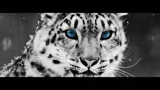 Природа и животные алтайского края(, 2016-05-16T12:04:03.000Z)