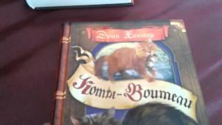 Коты-Воители. Обзор 1 цикла. 1 часть.