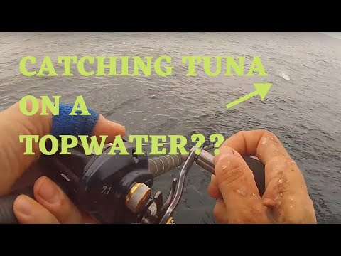 Popper Fishing For Tuna | TopGun 80 | 2.5 Day