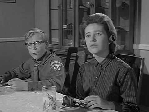 The Patty Duke  S2E20 The Raffle