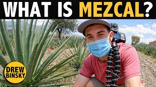 What is MEZCAL? (It's Better Than Tequila!)