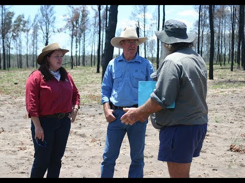 'The Burning Question' - Fire planning in the Maranoa