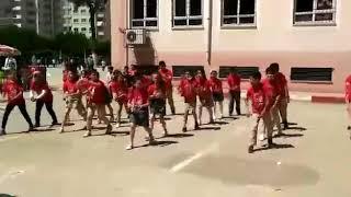 Erik dalı-19 mayıs gösterisi İsmail Hazar İlkokulu. Video
