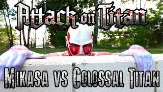 Mikasa vs Colossal Titan | ミカサ vs 超大型巨人