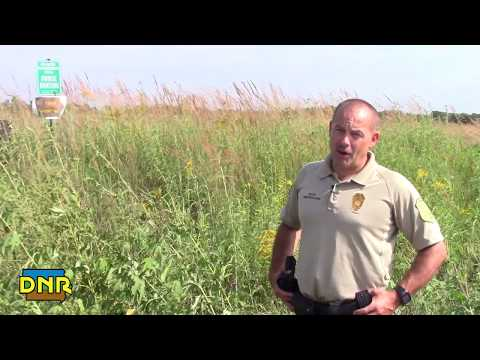 Pheasant Hunting Guidelines And Safety Tips, Iowa DNR