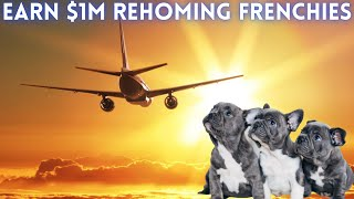 Start a $1M French Bulldog Breeding Business WITHOUT Money!