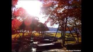 【Nagasaki】 Park Music 【水辺の森公園】