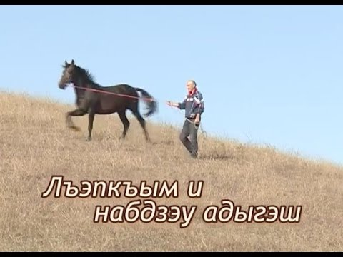 Чума на украине последние новости