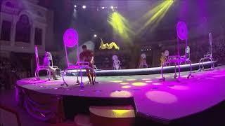 Большой Санкт-Петербургский Государственный Цирк/шоу ВОЛШЕБНЫЕ ФОНТАНЫ