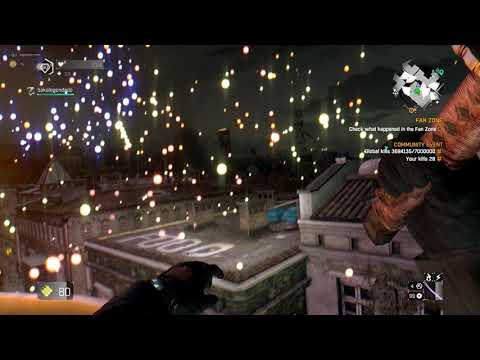 FIREWORK CHASE - DYING LIGHT |