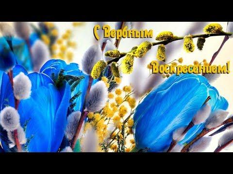 Поздравления с Вербным Воскресеньем - Лучшие видео поздравления в ютубе (в высоком качестве)!
