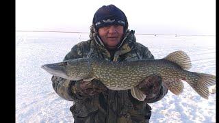 первая зимняя рыбалка на щуку в 2021 году
