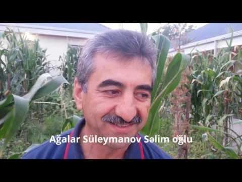 Bəriabad - Müsahibə. Ağalar Süleymanov Səlim Oğlu