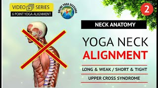 Yoga Neck Alignment | Yoga Anatomy | Part 2