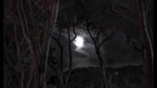 Saltatio Mortis Mondlicht by Me